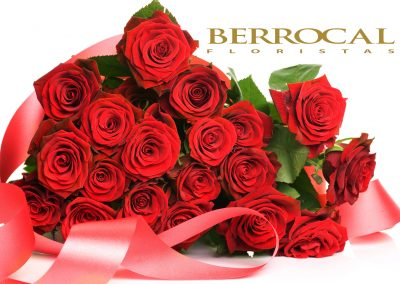 Rose Day Wallpapers, Images, Pics, Photos, Photo Gallery