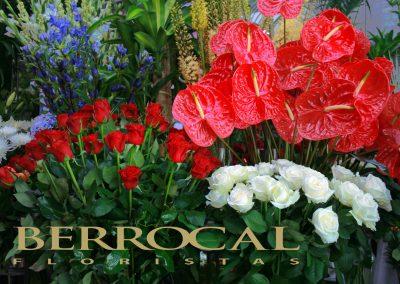 Exposición Floristería Berrocal Marbella