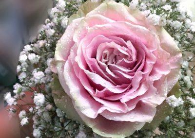 Ramo Dama de honor.  Rosa y Gypsophila paniculata.