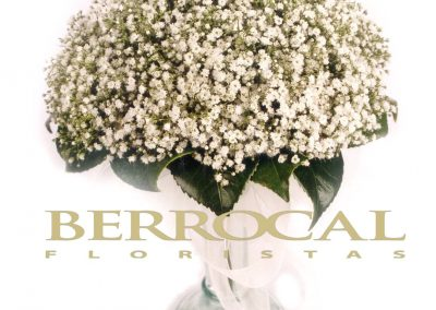 Bridal bouquet of Gypsophila paniculata,