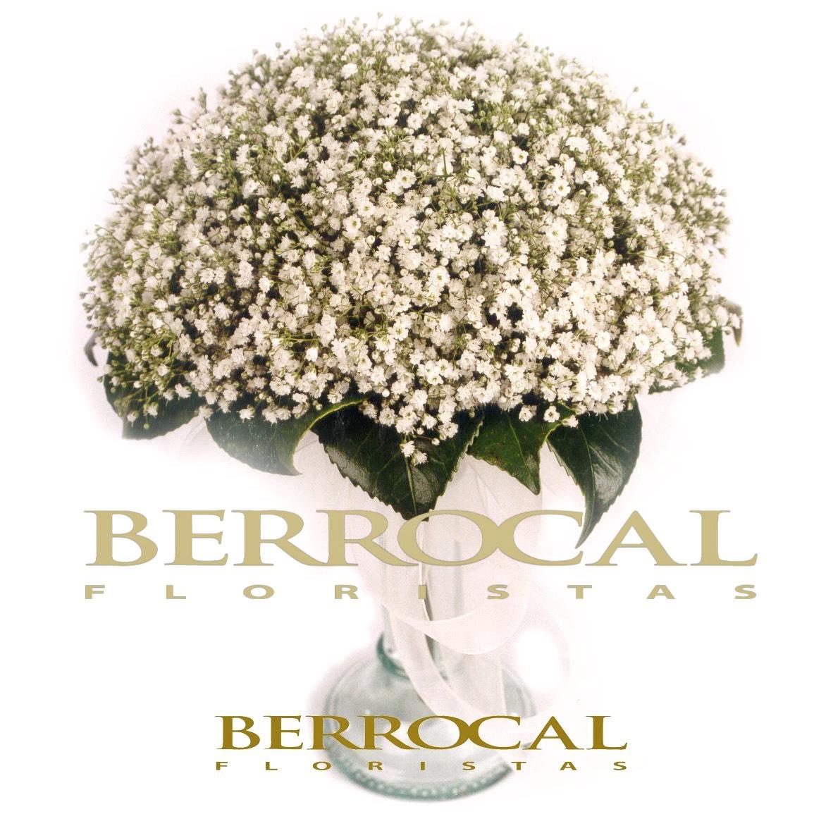 Bridal bouquet of Gypsophila paniculata,